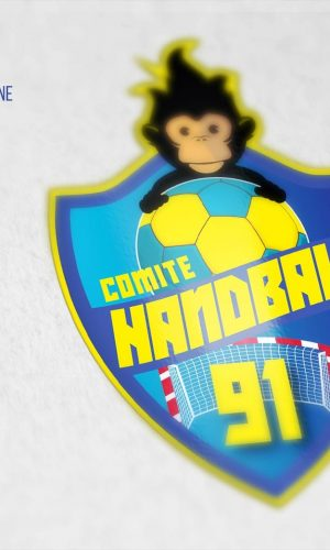 Logo Comité Handball Essonne